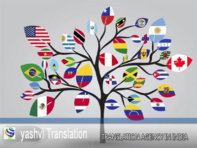 Why Hiring professional Language Translation services for visa?